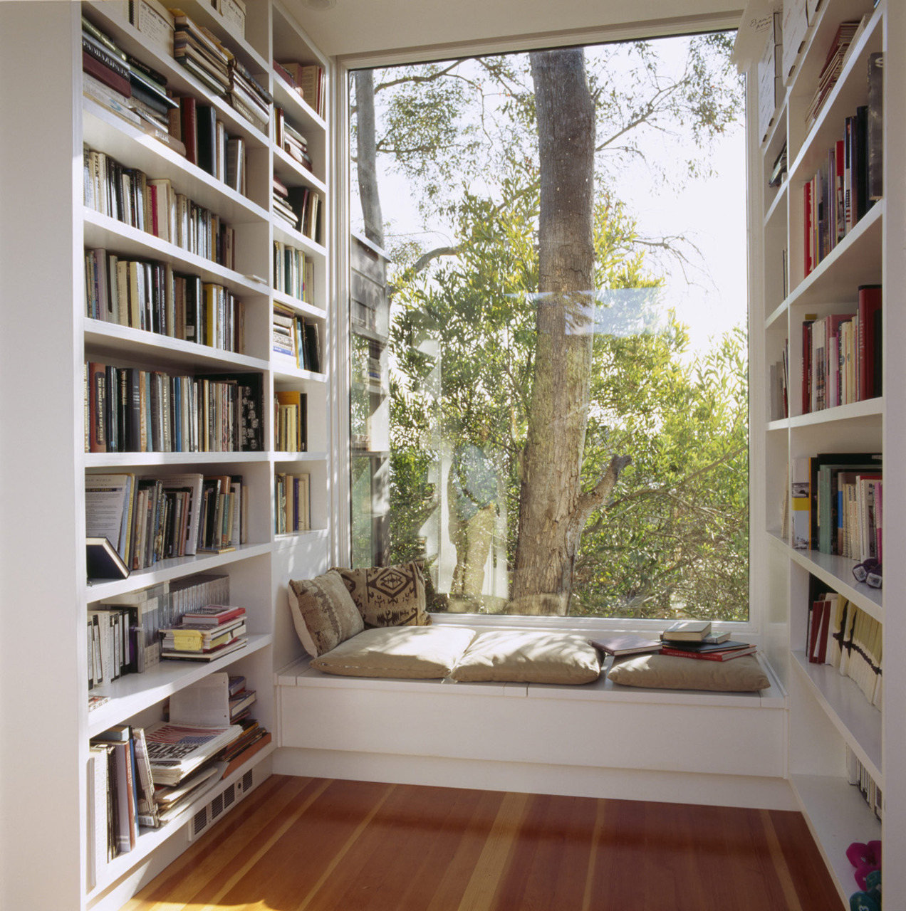 """Superb img of  consists mostly of building enough bookshelves."""" – Anna Quindlen with #958E36 color and 1272x1280 pixels"""